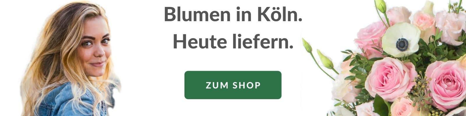 Blumen verschicken Köln - Blumenversand