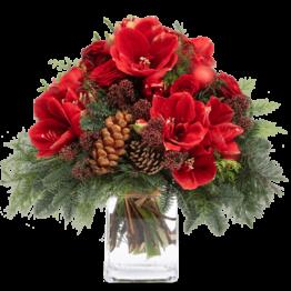 Blumen-verschicken-Weihnachten