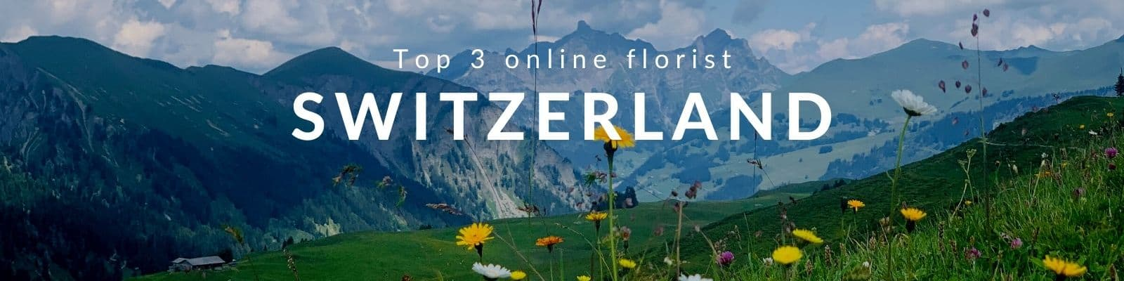 Flower Delivery Switzerland - Send Flowers to Switzerland