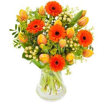 Frühlingsblumen verschicken - Blumenversand