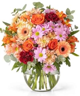 Lidl Blumen - Blumenversand Happy Day