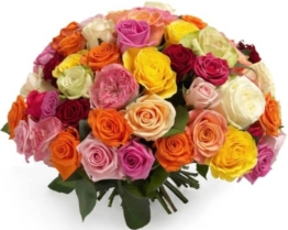 Fröhlicher Rosen mix