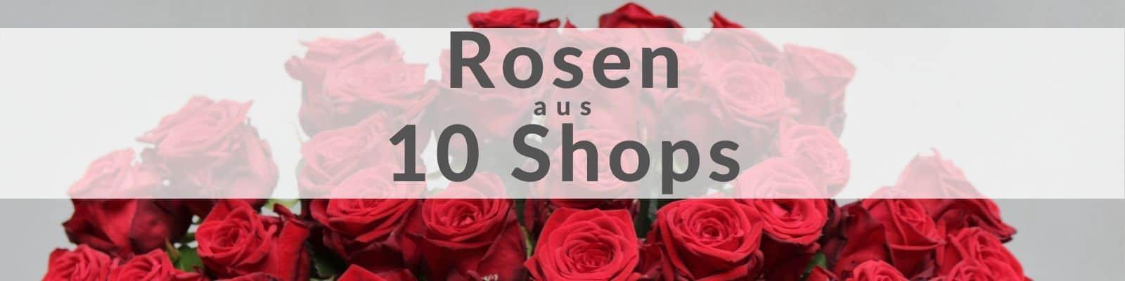 Rosen verschicken - Rosenversand Rosenstrauß