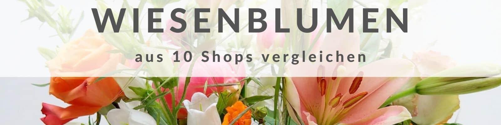 Wiesenblumen - Wiesenblumenstrauß kaufen