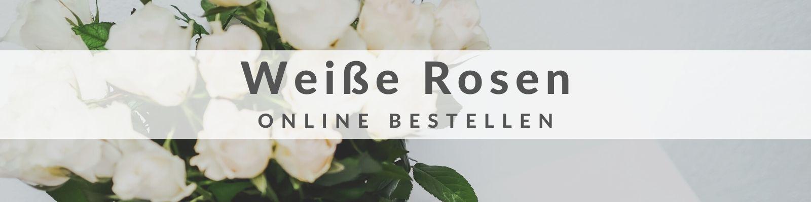Weiße Rosen bestellen und verschicken
